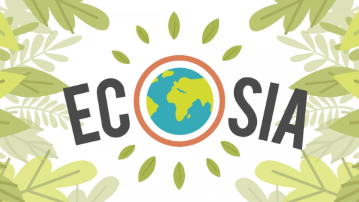 Ecosia, ecco come salvare il pianeta con una ricerca Google (o quasi)